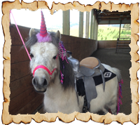 Pony Party at Oregon Dream Ponies Ranch
